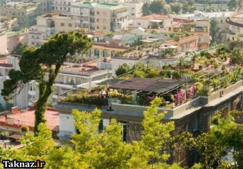 image, تصاویر باغ و باغچه های روی پشت بام خانه های کشورهای مختلف