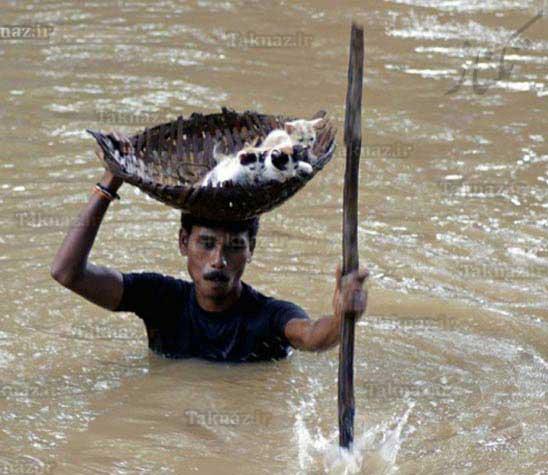 image تصاویر تاثیر گذار از کمک انسان ها به همنوعان خود