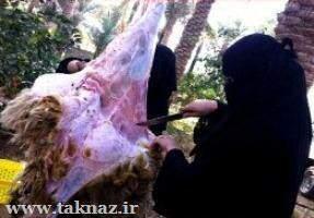 عکس, عکس خانم های قصاب عرب