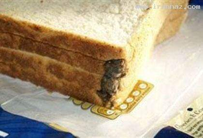 image, عکسی باورنکردنی از یک موش مرده در نان