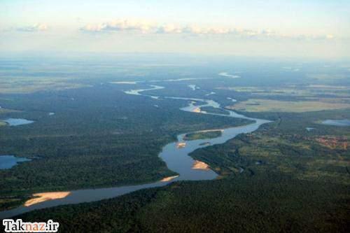 image این عکس های بی نظیر از جنگل همیشه بارانی آمازون را از دست ندهید