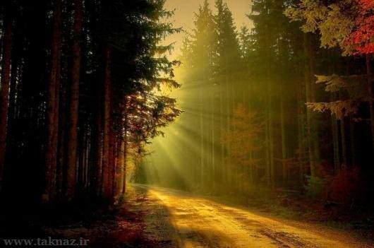 image تصاویری بدیع از طبیعت دیدنی جهان