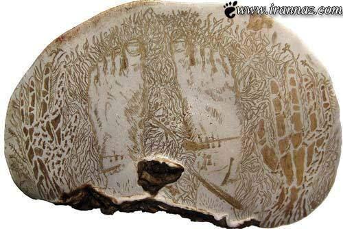 هنرنمایی شگفت انگیز و خارق العاده روی سطح قارچ!