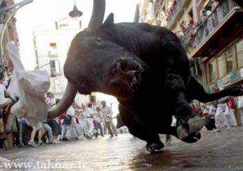 image سنت جالب گاو بازی در پامپلونا کشور اسپانیا