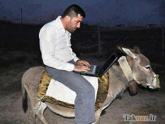 image عکس های بامزه از سوژه های ایرانی دیدنی سری اول