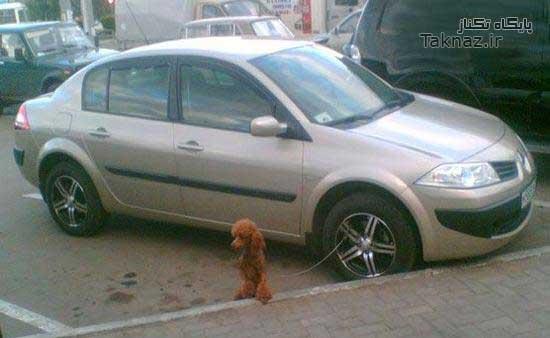 image عکس های فوق العاده خنده دار و دیدنی از سراسر اینترنت