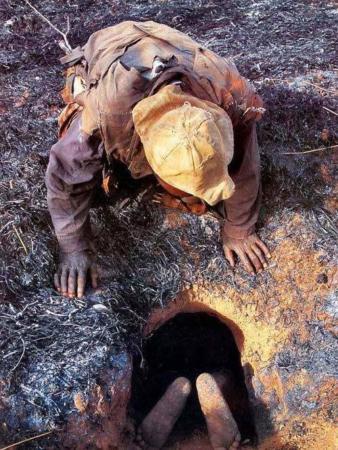 image آموزش جالب روش عجیب شکار کردن مار پیتون