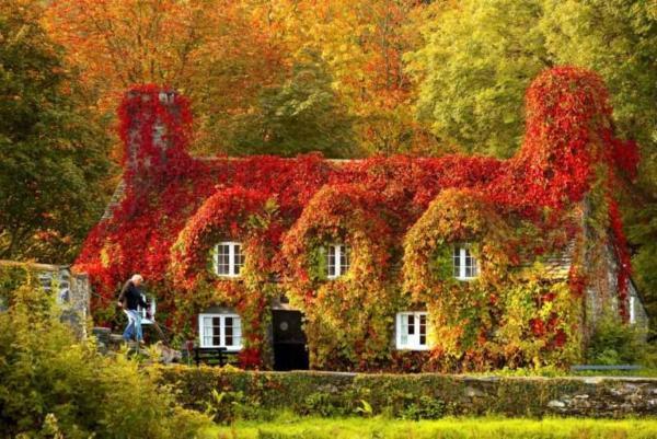 image عکس هایی زیبا از یک خانه پاییزی