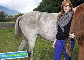 image دزدیدن دم اسب ها روش نوین دزدی