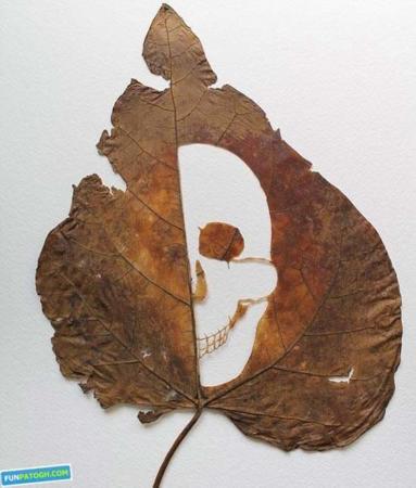 image تصاویر دیدنی از کنده کاری هنرمندان بر روی تنه درختان