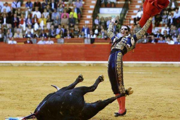 image, تصویری زیبا از گاو بازی در اسپانیا