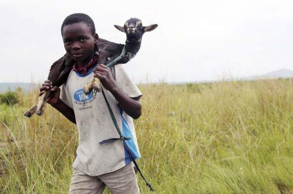 image یک نوجوان روستایی در کنگو