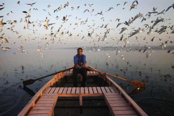 image قایقرانی یک مرد در رودخانه یاموا در دهلی نو