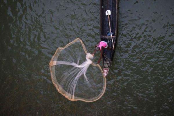 image ماهیگیری در دریاچه ای در هند