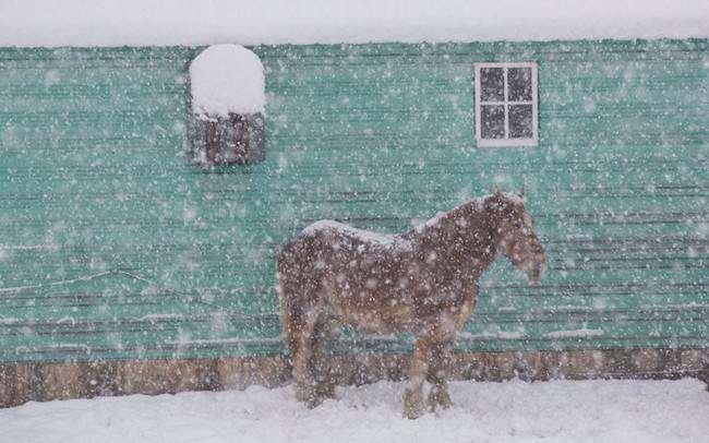image بارش برف شدید در کینگستون ویسکانسین آمریکا