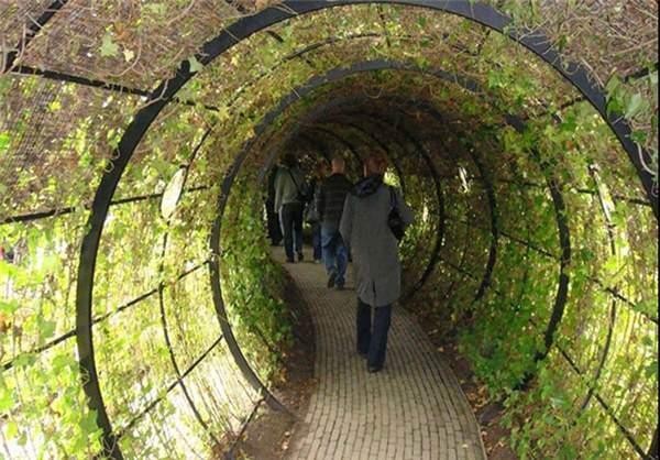 image عکس های دیدنی از سموم النویک خطرناک ترین باغ جهان
