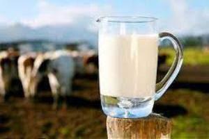 image آیا نوشیدن شیر در فصل پائیز و زمستان مفید تر است