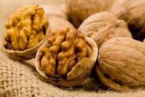 image گردو یکی از خوراکی های مفید برای درمان ناباروری مردان