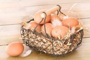 image تخم مرغ مهمترین منبع غذای برای زنان باردار
