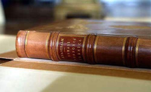 image, تصاویر تکان دهنده از جلد کتاب های با واقعی انسان