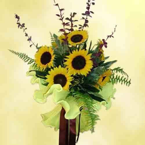 عکس, کاشت گل آفتابگردان