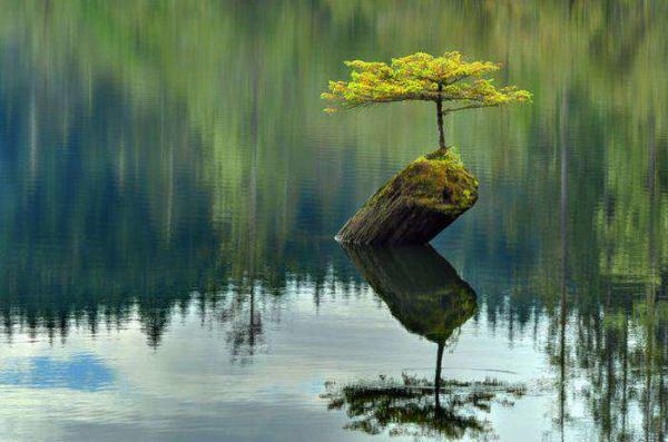 image جهان هستی را با این عکس های زیبا از طبیعت بشناسید
