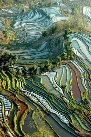 image عکس های زیبا از دنیای زیبای ما انسان ها