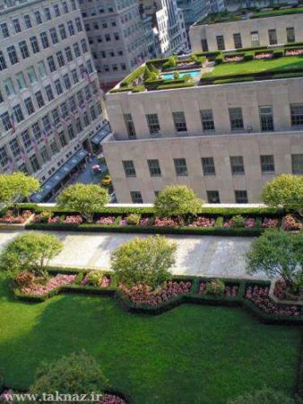 image تصاویر دیدنی پارک ها و باغ های سبز و زیبا روی پشت بام