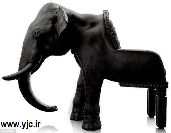 image, ایده های جدید ۲۰۱۳ در طراحی مبلمان منزل به شکل حیوانات