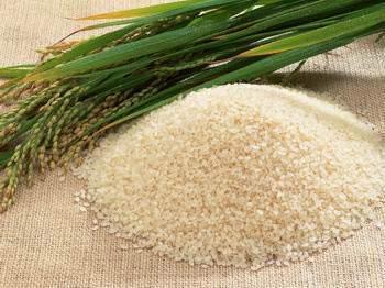 image, روش پختن برنج آرژانتینی