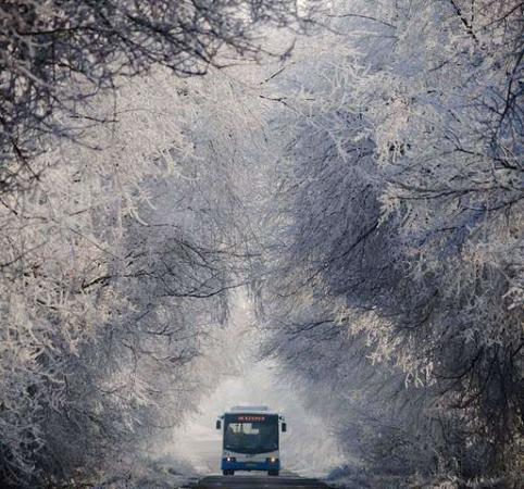 image جاده ای زمستانی در مجارستان