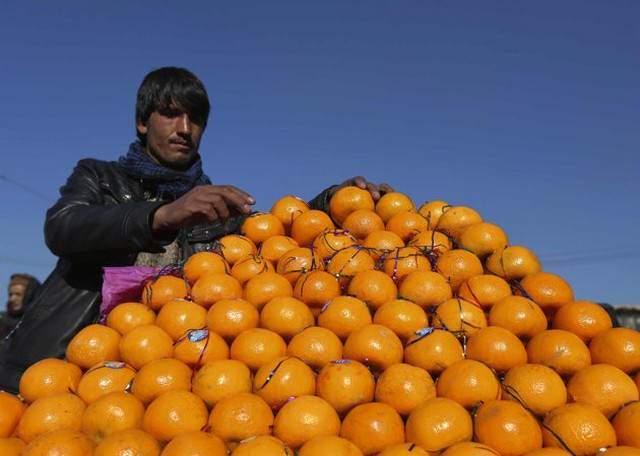 image فروشنده دوره گرد پرتقال در کابل