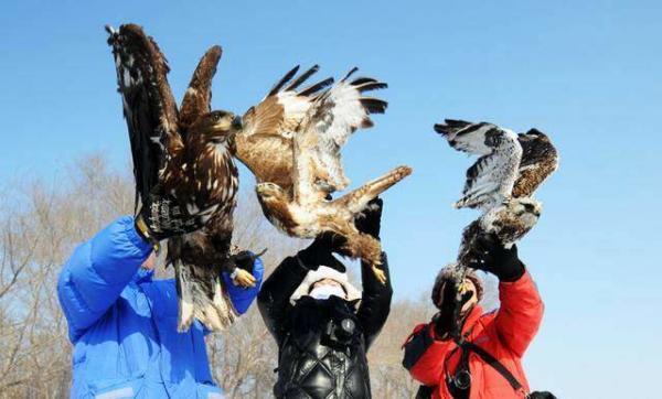image فعالان محیط زیست چینی در حال رها کردن سه پرنده در طبیعت