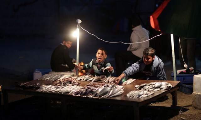 image, نوجوانان ماهی فروش در شهر غزه