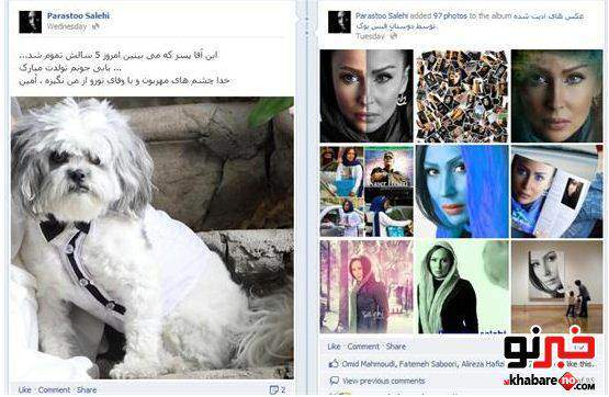 image عکس دیدنی سگ بازیگر معروف ایرانی