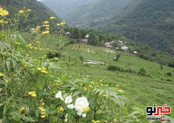 image عکس های دیدنی از روستای زیبای پلام