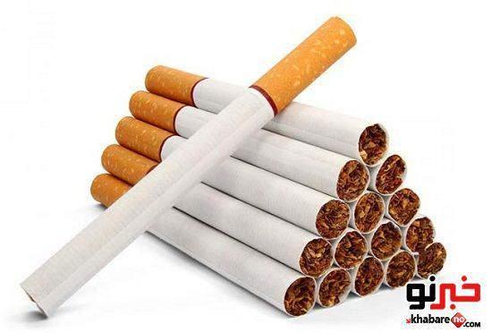 image سیگار چطور به وجود آمده