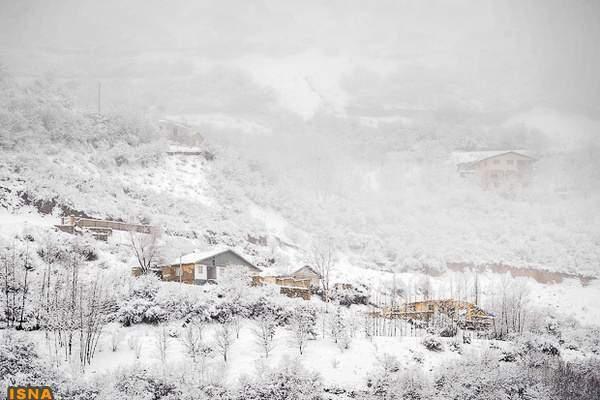 image تصاویر زیبا از جاده چالوس در فصل برف و زمستان