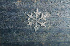 image خوراکی مفید فصل زمستان چیست