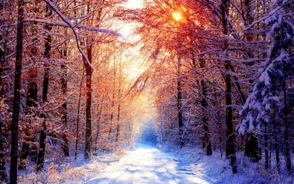 image با کیفیت ترین پوستر از فصل سرد زمستان