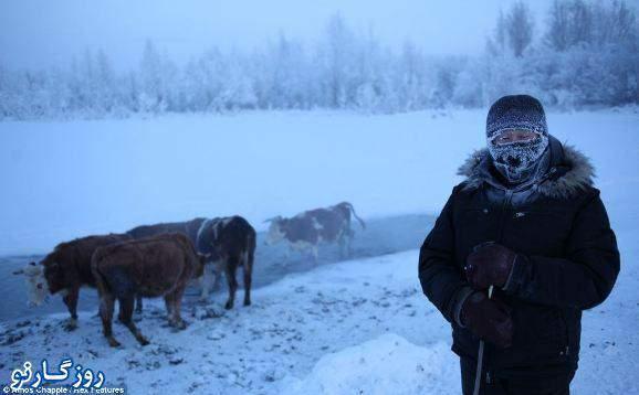 image سرد ترین نقطه زمین برای زندگی کجاست