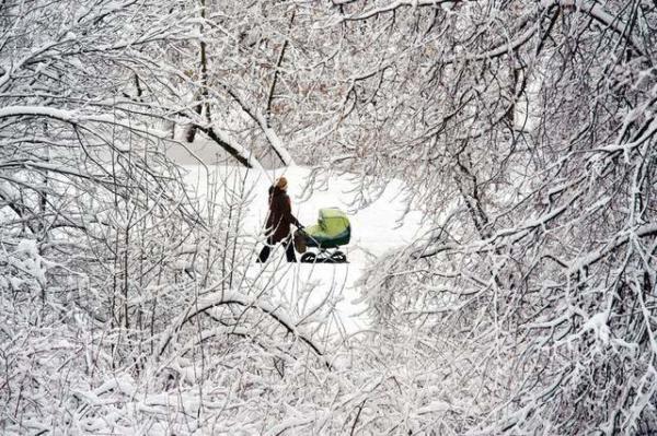 image بارش شدید برف در مسکو