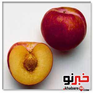 image میوه شلیل خواص و مضرات برای بدن
