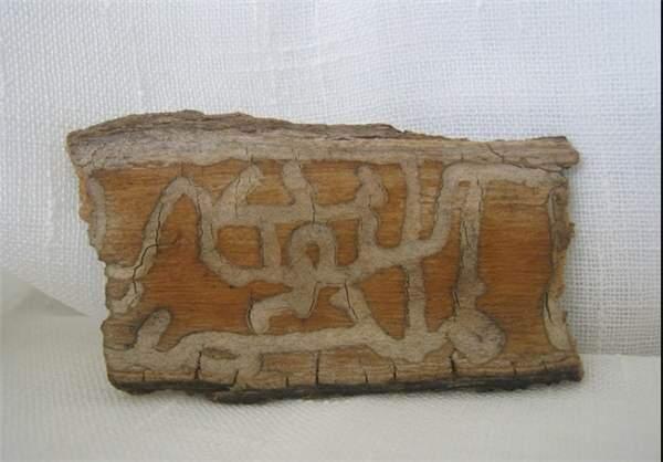 image آثاری از معجزات جهان نقش بستن نام محمد (ص) و الله روی تنه درخت