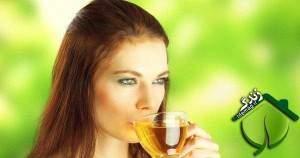 image چای سبز واقعا برای لاغری موثره