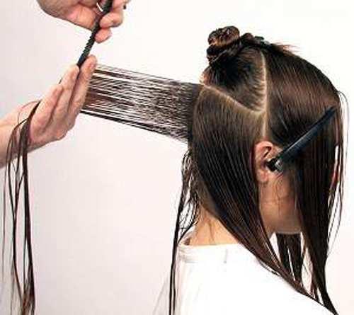 image, آموزش تصویری کوتاه کردن و رنگ کردن موی زنانه در منزل