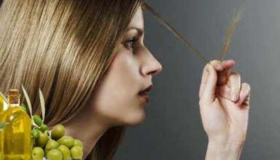 image, روغن زیتون و سرکه سیب درمان قطعی موخوره