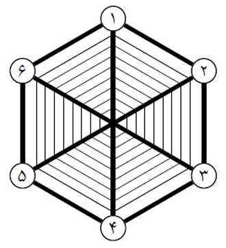 image اصل معمای شش عنکبوت همراه با جواب واقعی