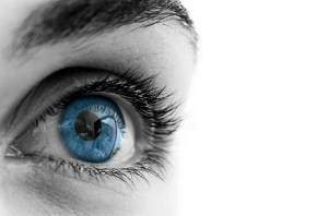 image بیماری مگس پران چشم چیست و درمان آن