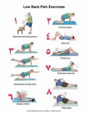 image, آموزش حرکات ورزشی تصویری برای کمردرد ساده